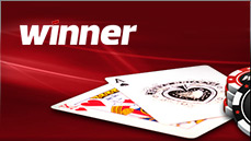 winner online poker